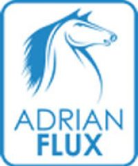 Adrian Flux Insurance Services